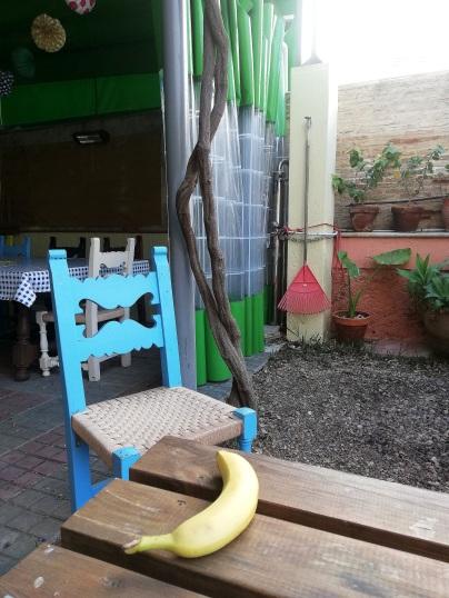 Hostel garden